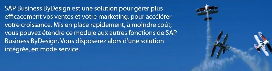 CRM SAP Business ByDesign